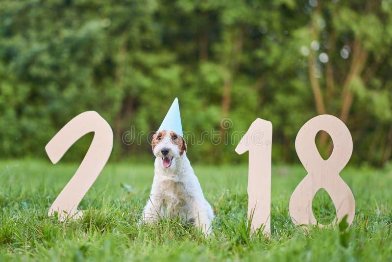 Cão feliz adorável do terrier de raposa no greetin do ano novo do parque 2018 fotos de stock royalty free