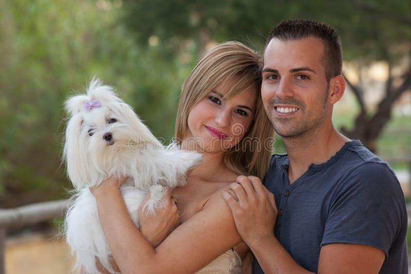 Cão maltês do animal de estimação da família fotografia de stock royalty free