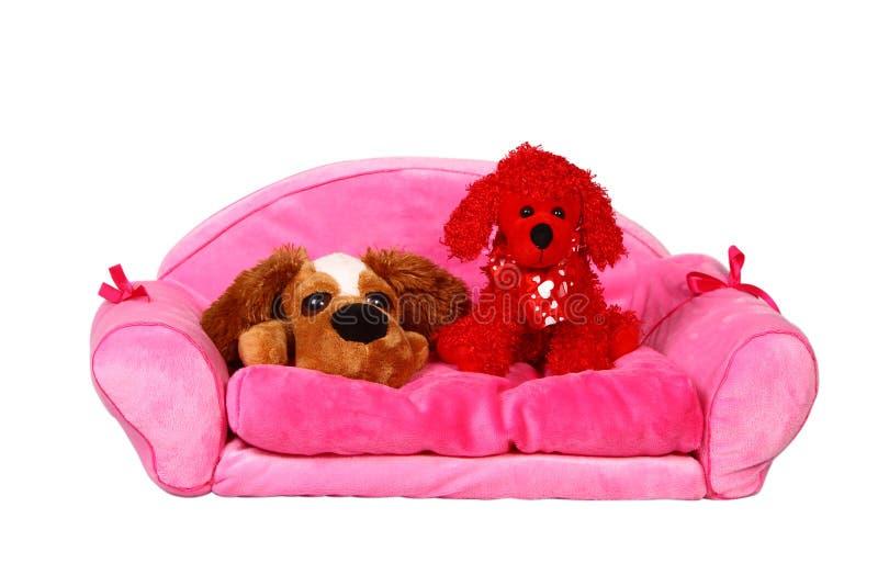 Cão na cama imagens de stock royalty free