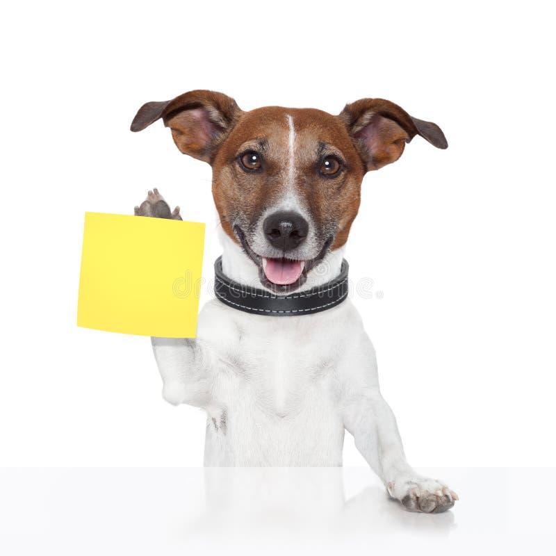 Cão pegajoso da bandeira da nota imagem de stock royalty free