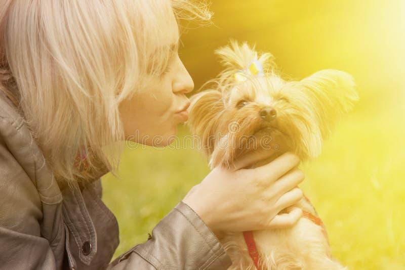 Cão pequeno bonito nos braços de uma moça bonita que lambe a foto de stock