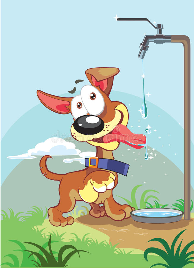 Cão pequeno e água ilustração stock
