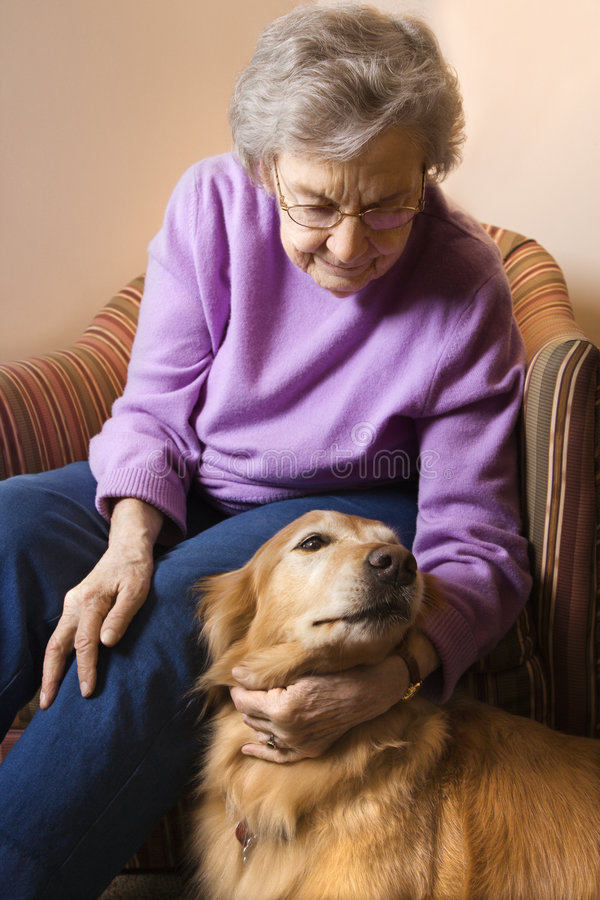 Cão petting da mulher idosa. fotos de stock royalty free