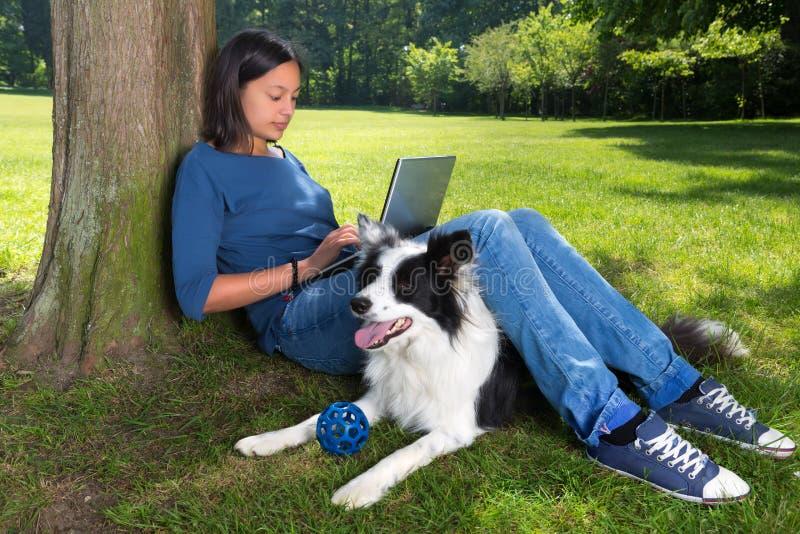 Cão que espera um jogo de bola imagens de stock royalty free