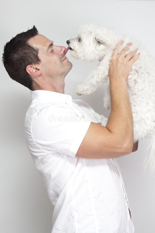 Cão que lambe o nariz do homem imagens de stock royalty free
