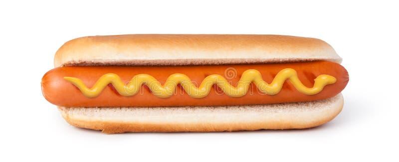 Cão quente com mostarda imagem de stock royalty free