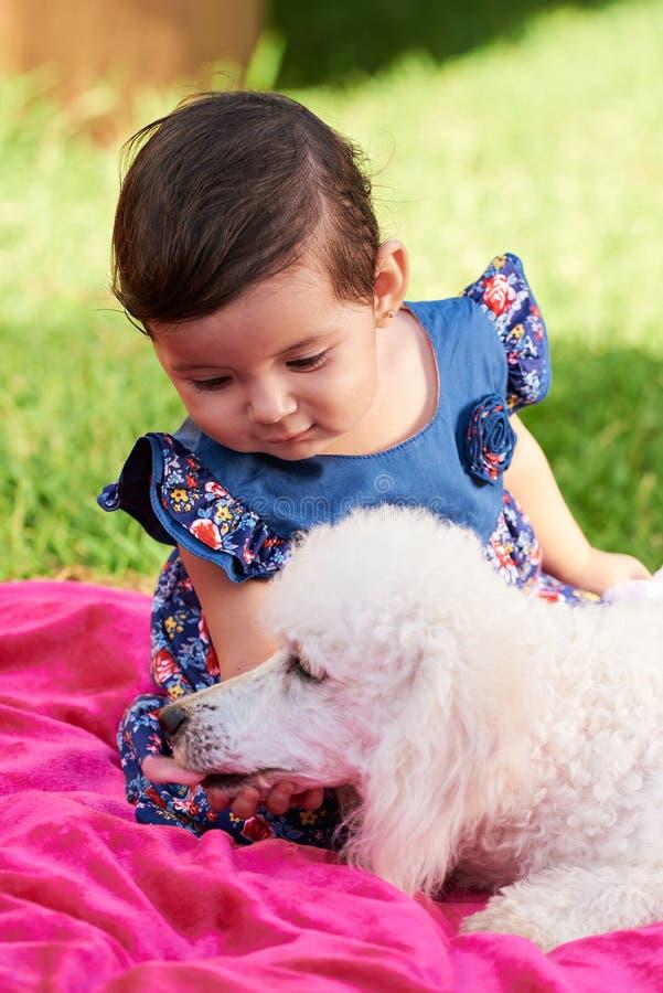 Cão tocante da menina pequena fotos de stock royalty free