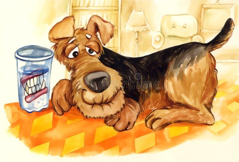Cão velho com jogo dos dentes falsos ilustração stock
