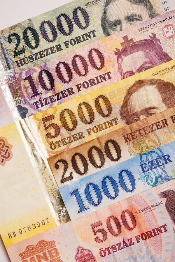 Cédulas húngaras da forint fotografia de stock
