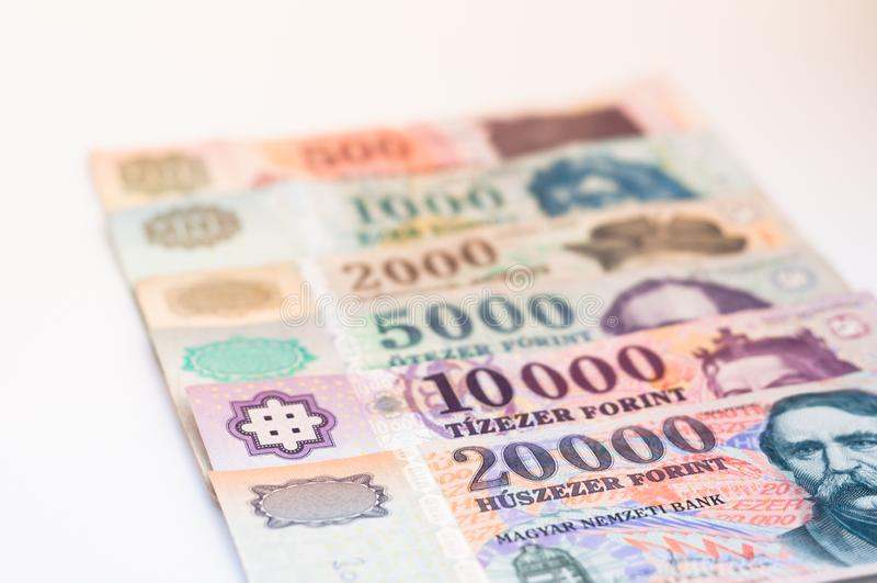 Cédulas húngaras da forint - fundo fotos de stock royalty free