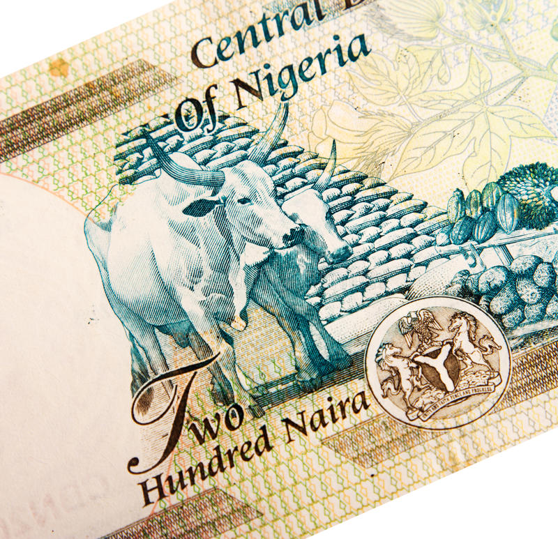 Cédulas nigerianas imagem de stock royalty free