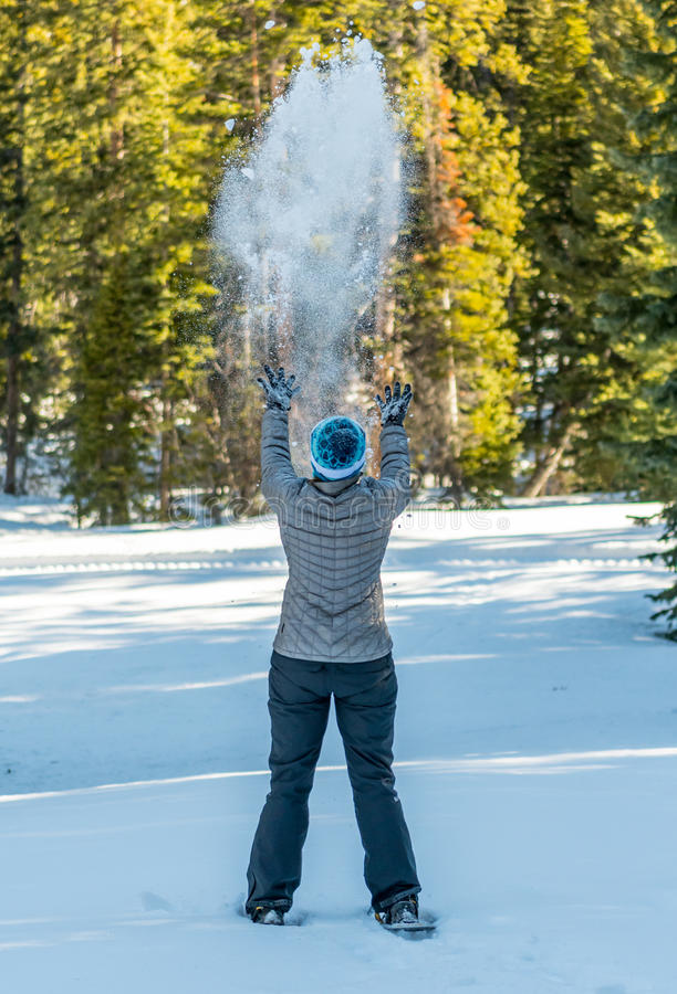 Célébration de l'hiver sur des chaussures d'exposition image stock