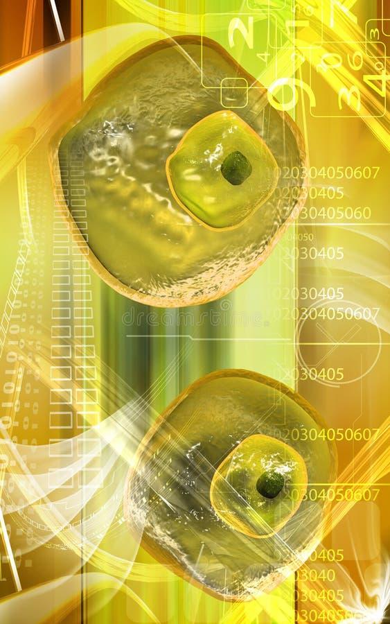 Célula del huevo stock de ilustración