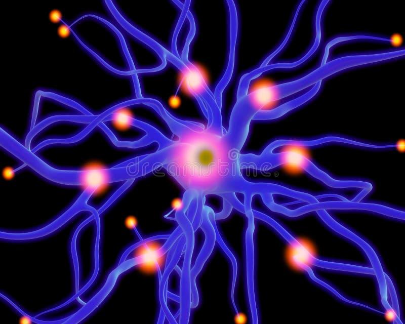 Célula nerviosa o neuronas stock de ilustración. Ilustración de ...