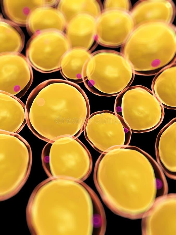 Células gordas stock de ilustración