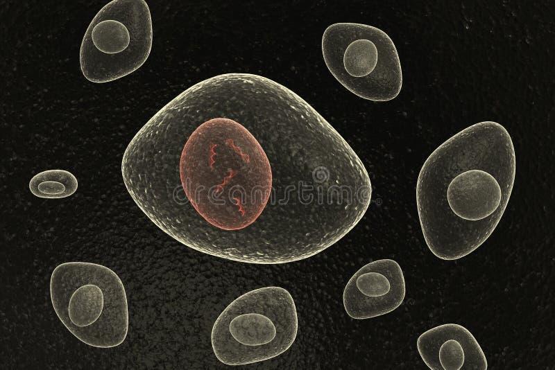 Células orgánicas del núcleo de la DNA libre illustration