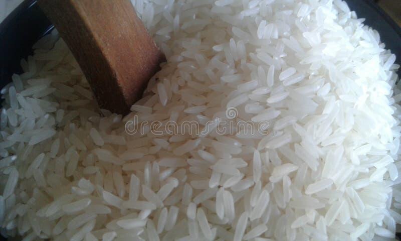 Céréale blanche de céréale de riz photographie stock