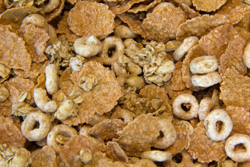 Céréale d'avoine et de blé photos libres de droits