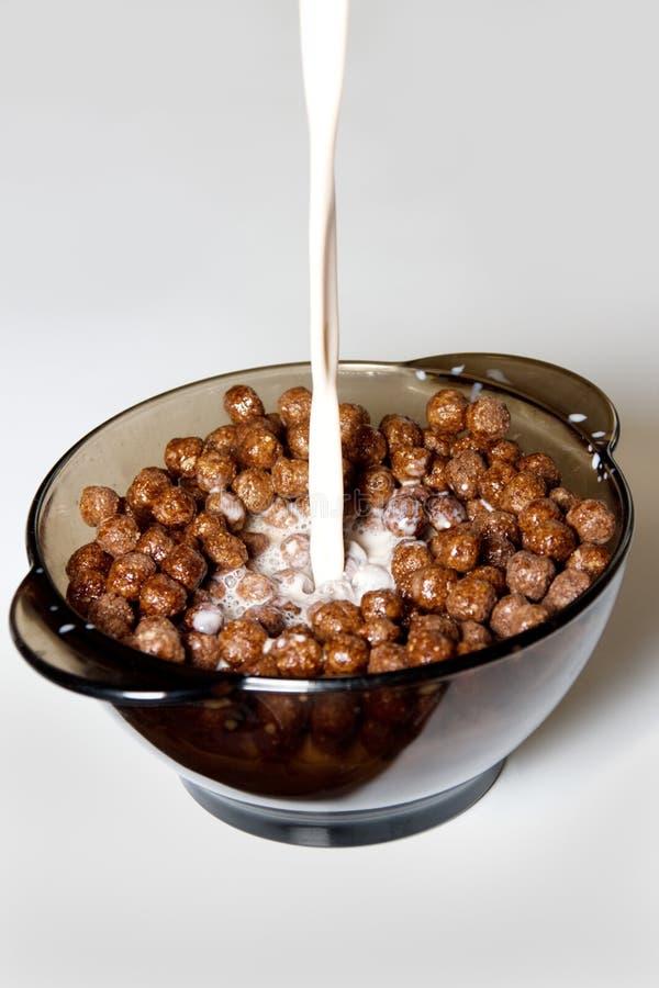 Céréale de chocolat avec du lait photo libre de droits