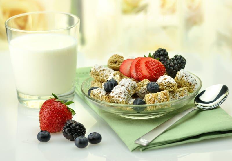 Céréale et lait images libres de droits