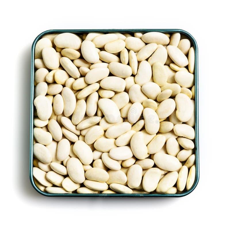 Céréales de haricots sur le fond d'isolement blanc image stock