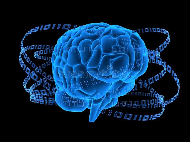 Cérebro binário ilustração royalty free