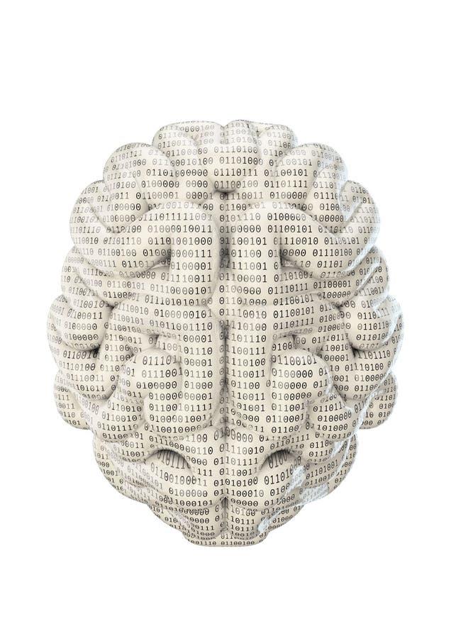 Cérebro binário ilustração do vetor