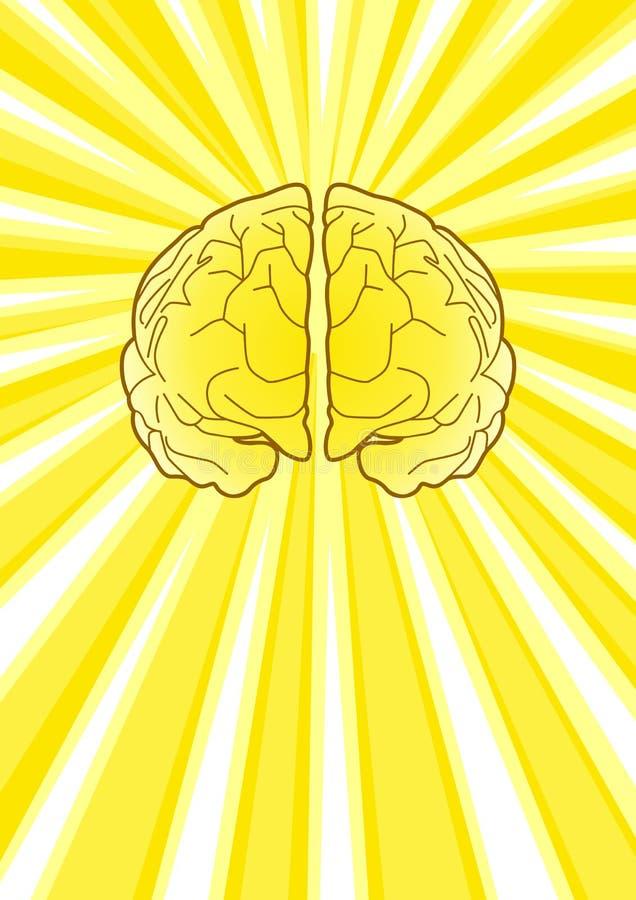 Cérebro brilhante ilustração royalty free