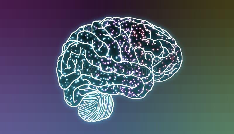Cérebro com os neurônios iluminados nas sinapses ilustração do vetor
