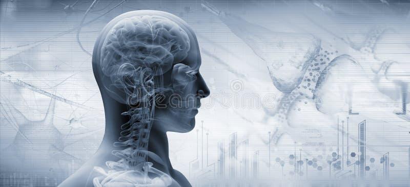 Cérebro, conceito de pensamento ilustração stock