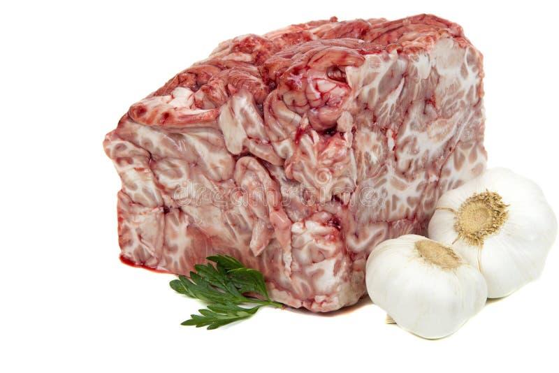 Cérebro da carne de porco foto de stock royalty free