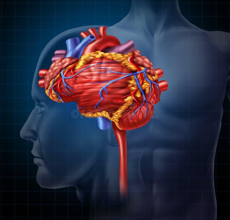 Cérebro do coração ilustração royalty free