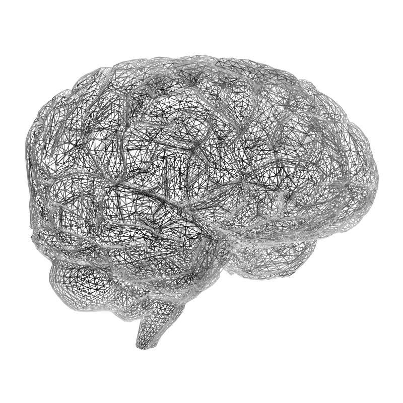 Cérebro do fio ilustração royalty free