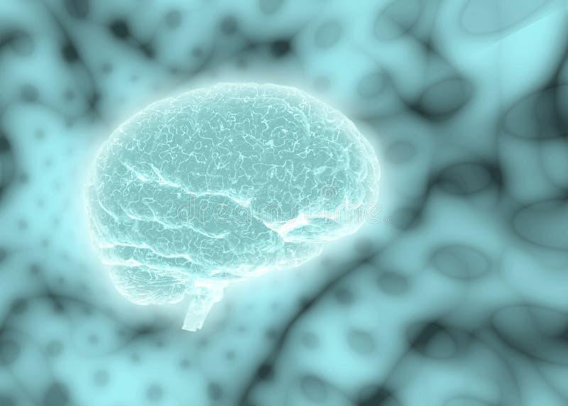 Cérebro do fundo ilustração stock
