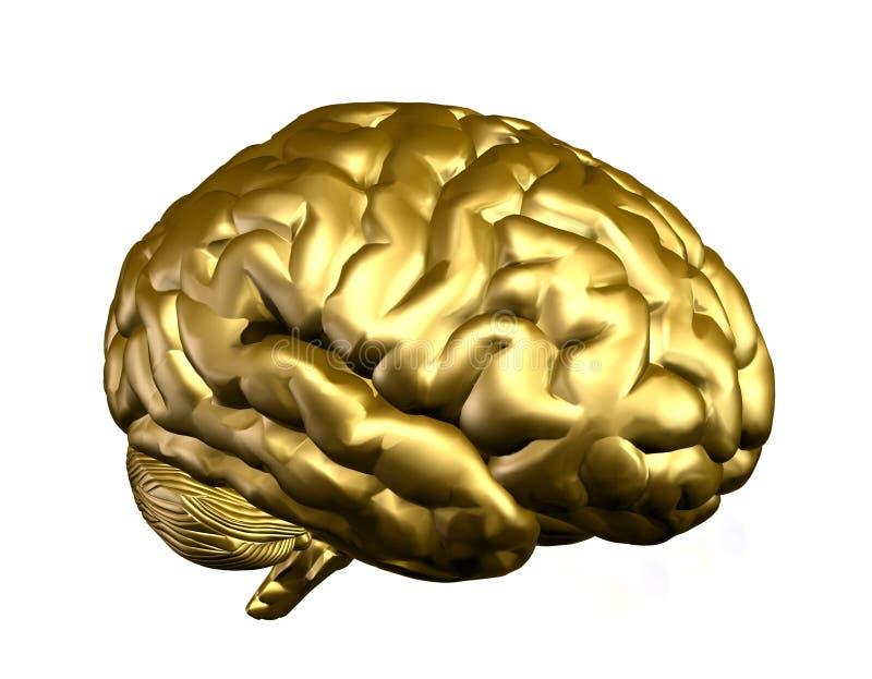 Cérebro dourado ilustração do vetor