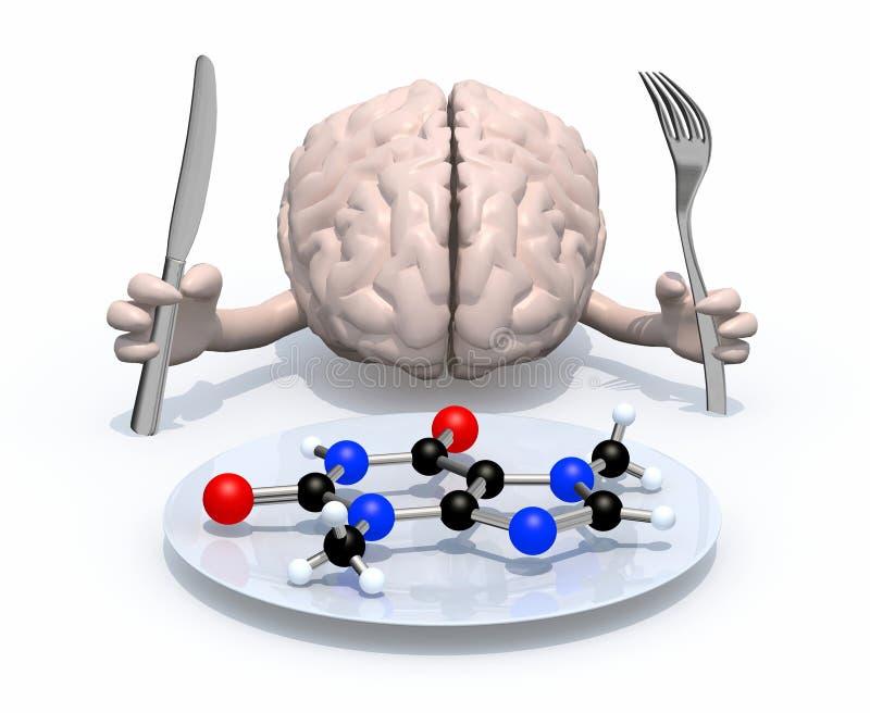Cérebro e conceitos moleculars do alimento ilustração do vetor