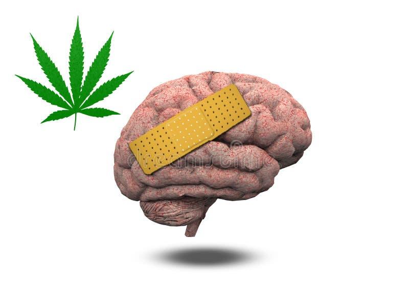 Cérebro ferido com marijuana ilustração do vetor