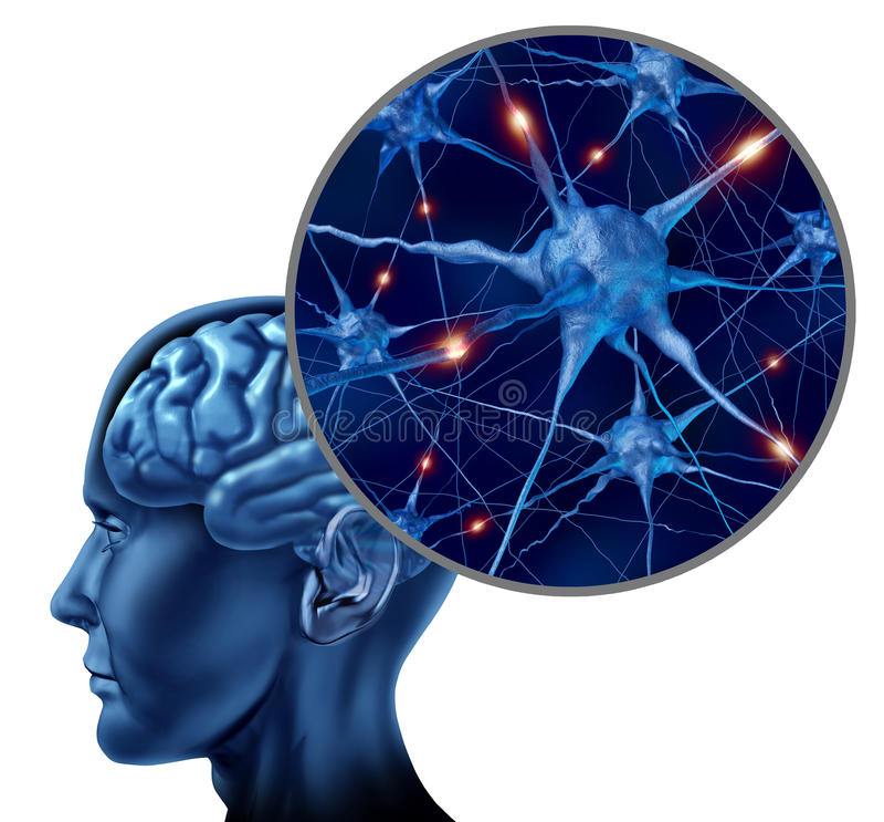 Cérebro humano com fim acima dos neurônios ativos ilustração do vetor