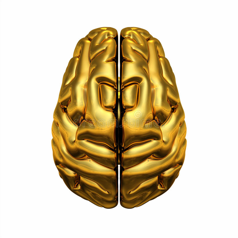 Cérebro humano dourado ilustração stock