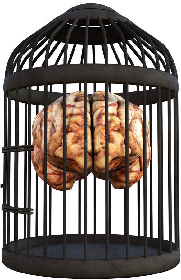 Cérebro humano, gaiola de pássaro, isolada ilustração do vetor