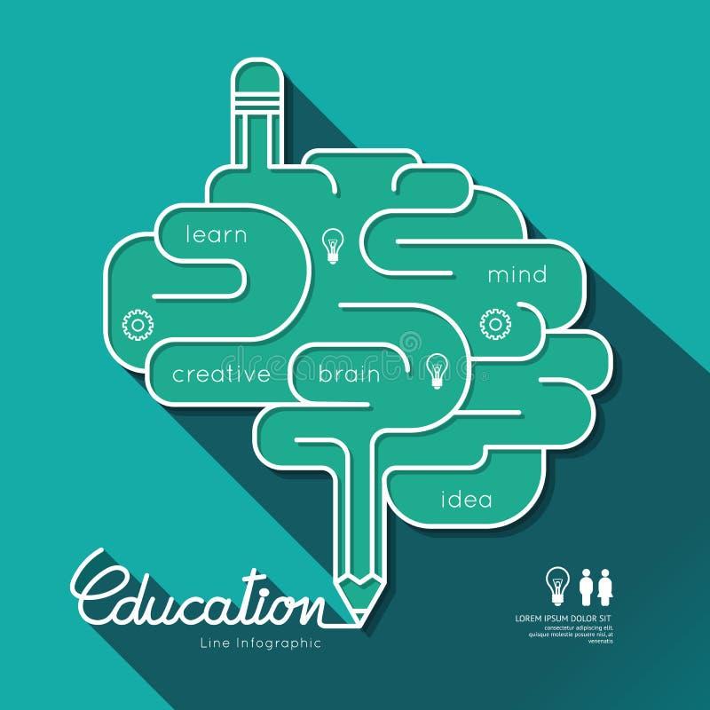 Cérebro linear liso do esboço da educação de Infographic da educação ilustração do vetor