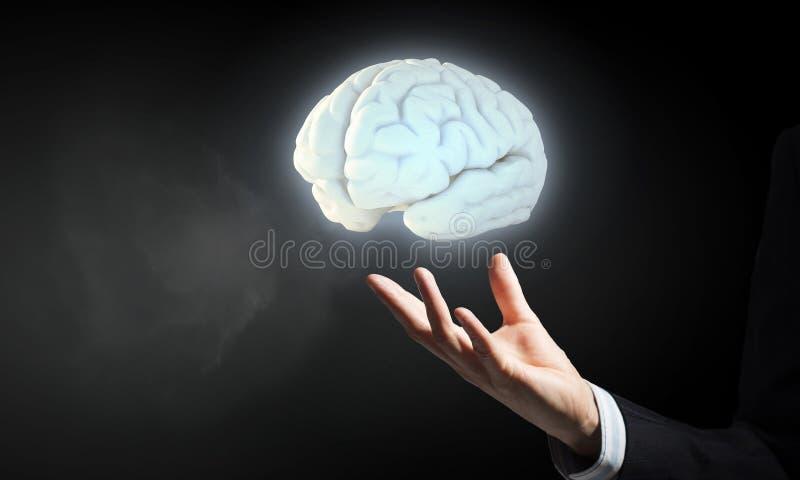 Cérebro na mão masculina imagem de stock