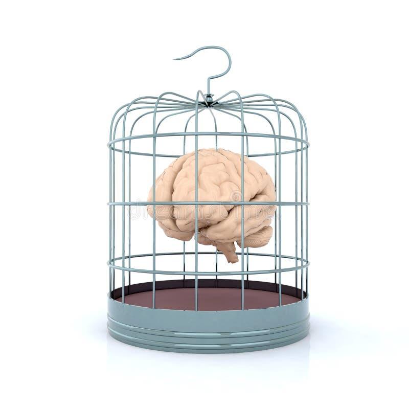 Cérebro no birdcage ilustração stock