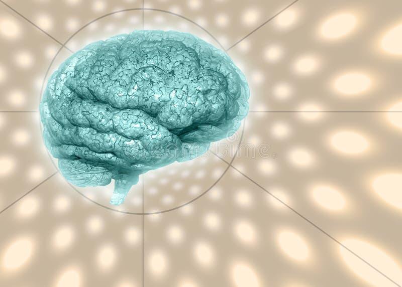 Cérebro psicadélico do fundo ilustração royalty free