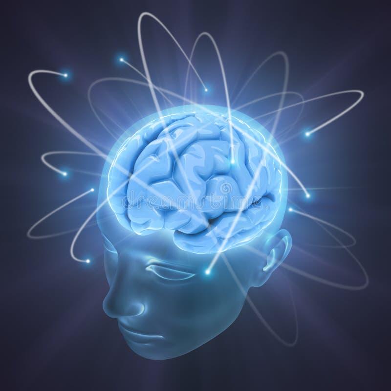 Cérebro vívido ilustração do vetor