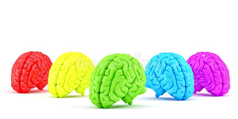 Cérebros humanos coloridos Conceito creativo Isolado Contem o trajeto de grampeamento ilustração royalty free