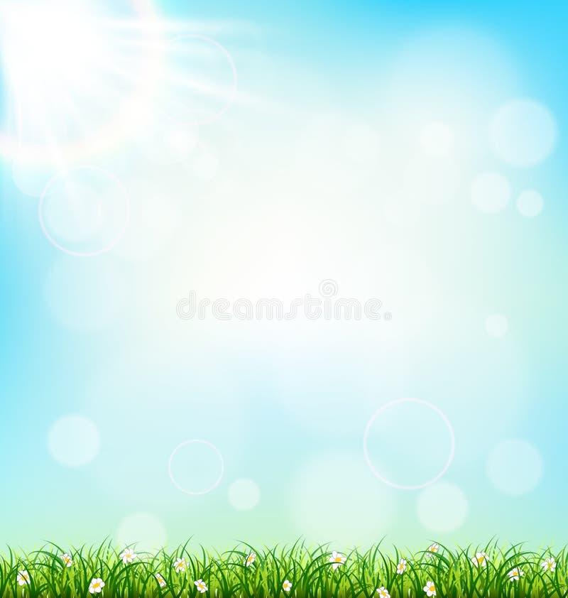 Césped de la hierba verde con las manzanillas en el cielo azul Spri floral de la naturaleza stock de ilustración