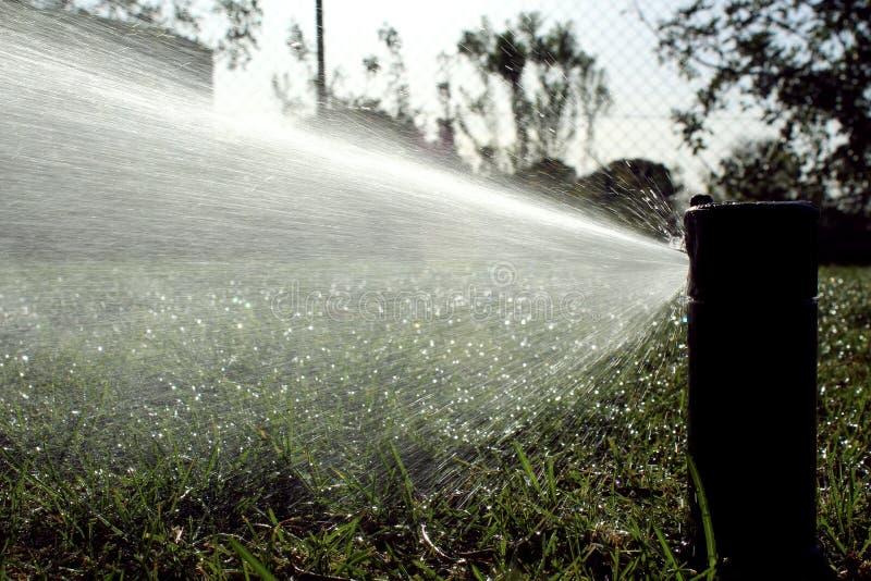 Césped de riego automático del sistema de irrigación del jardín fotografía de archivo libre de regalías