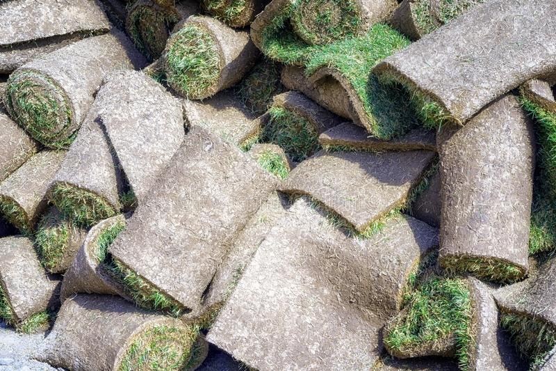 Césped herboso en rollos foto de archivo