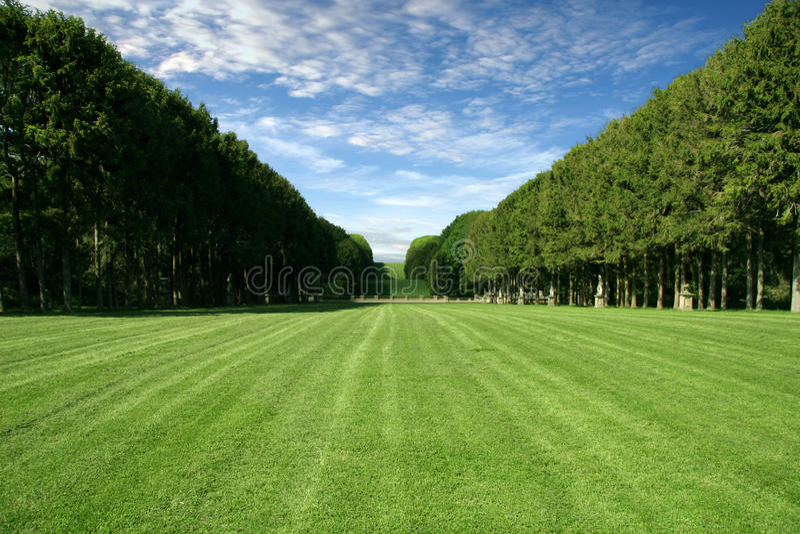 Césped Manicured - campo verde grande imagen de archivo